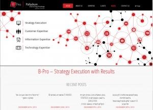 BI-Pro web site
